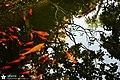 9286 - Kenting National Park - TOP TING (yct13909) - 101.jpg