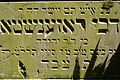9830viki Cmentarz żydowski na Ślężnej. Foto Barbara Maliszewska.jpg
