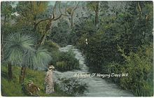 Postcard (c.1900) titled 'A Glimpse Of Wongong Creek.W.A', representing the area near the South-Western Highway that for a time was a popular picnic destination.