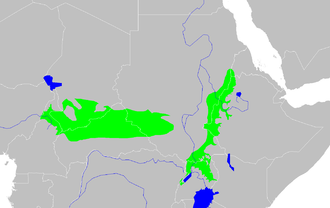 Sudan (region) - East Sudanian Savanna (green) in Central and East Africa