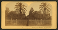 A Florida residence with date trees, from Robert N. Dennis collection of stereoscopic views.png