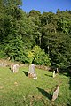 A graveyard at Benderloch - geograph.org.uk - 1343494.jpg