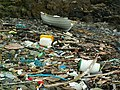 A litter strewn cove between Scarlett and Poyllvaaish - geograph.org.uk - 60507.jpg