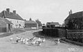A road through Reepham, nr Lincoln with geese 1910.jpg