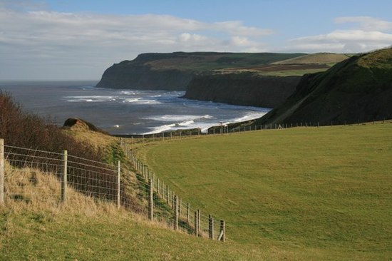 Above Cattersty Cliffs - geograph.org.uk - 337726.jpg