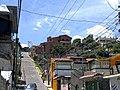 Acxotla del Río, Tlax., Mexico - panoramio (5).jpg