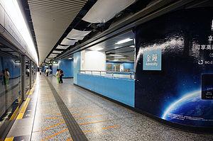 Admiralty Station (MTR) - Platform livery