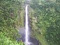Akaka falls Hamakua.jpg
