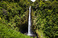 Akakafalls-hawaii.jpg