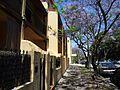 Alexandria NSW 2015, Australia - panoramio (235).jpg