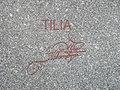 Alfred Habermann Tilia 3.jpg