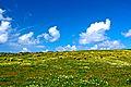 Algarve - 092 (3467440507).jpg