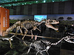Alioramus and Guanlong.jpg
