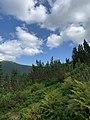 Amazing Carpathian landscapes.jpg