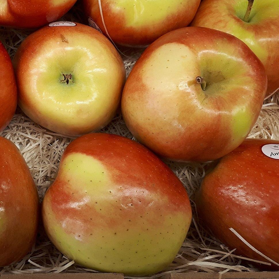 Ambrosia apples 2017 A3