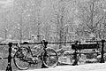 Amsterdam winter-33 (8460112731).jpg