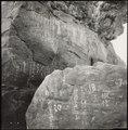 Ancient history, Aswan - UNESCO - PHOTO0000003047 0001.tiff