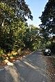 Andiparai shola road widening2.jpg