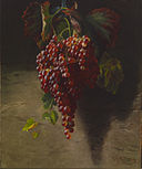 Andrew John Henry Way - Bunch of Grapes - Walters 371887.jpg