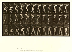 Animal locomotion. Plate 383 (Boston Public Library).jpg