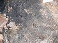 Annaberg ore mines 13.JPG
