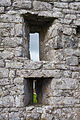 Annaghdown Abbey of St. John the Baptist de Cella Parva Windows 2010 09 12.jpg