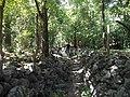 Antiguo Camino Real En Ixcatan - panoramio.jpg