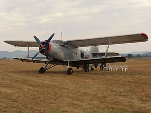 Antonov An-2TD Retro Sky Team.jpg