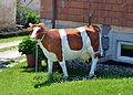 Anzenberg, cow.jpg