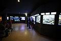 Aquarium du palais de la Porte Dorée 1.jpg