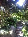 Arboretum-1711932.jpeg