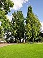 Arboretum (Zürich) 2011-07-28 17-52-28.jpg