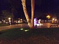 Areas verdes iluminadas en la noche.jpg