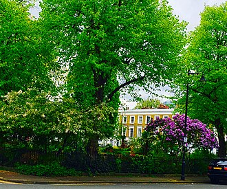 Islington - Grade II listed Arlington Square