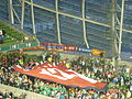 Armenian fans1.jpg