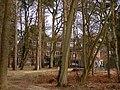 Ashurst Lodge, New Forest - geograph.org.uk - 148233.jpg