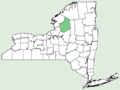 Asplenium viride NY-dist-map.png