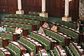 Assemblée des représentants du peuple photo9 مجلس نواب الشعب.jpg