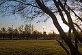 At the Sakharov Park - panoramio (2).jpg