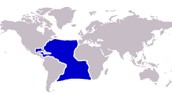Atlantic blue marlin distribution.PNG