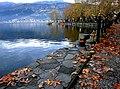 Autumn at the lake of Ioannina.jpg