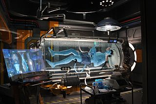 Attraction at Pandora–The World of Avatar