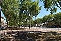 Avenue de Paris, Versailles 5.jpg