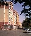 Avenue sidewalk, Dushanbe .jpg