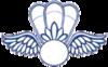 Aviation Survival Technician rating badge
