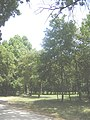 Bakonyszombathely3.JPG