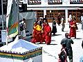 Bakula Rinpoche 2011.jpg