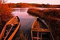 Barcos de pesca na Pateira de Fermentelos-Águeda-Portugal.jpg