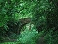 Basingstoke Canal, Disused Western Arm - geograph.org.uk - 477208.jpg