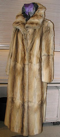 Bassarisk fur-coat, frontside.jpg